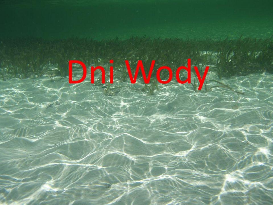 Dni Wody