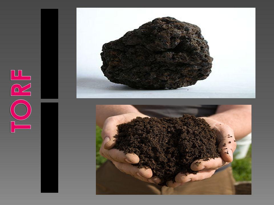 Młodsza odmiana węgla brunatnego.Matowa lub błyszcząca, twarda lub miękka.