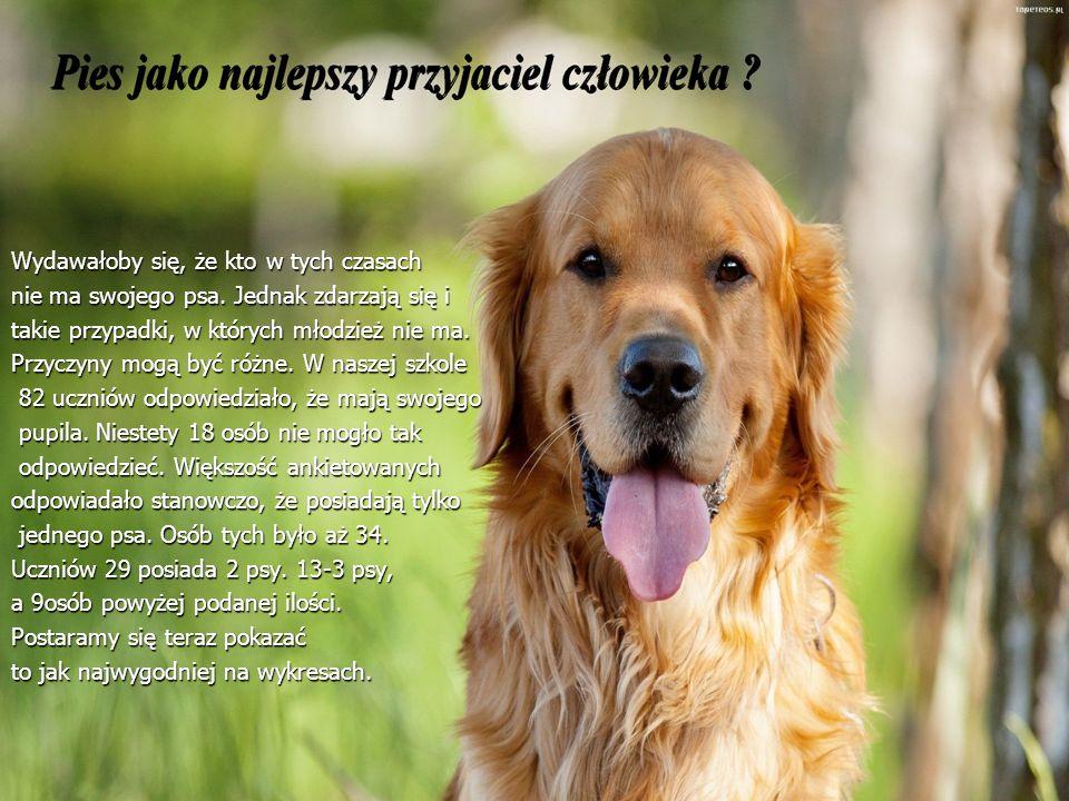 Wydawałoby się, że kto w tych czasach nie ma swojego psa. Jednak zdarzają się i takie przypadki, w których młodzież nie ma. Przyczyny mogą być różne.