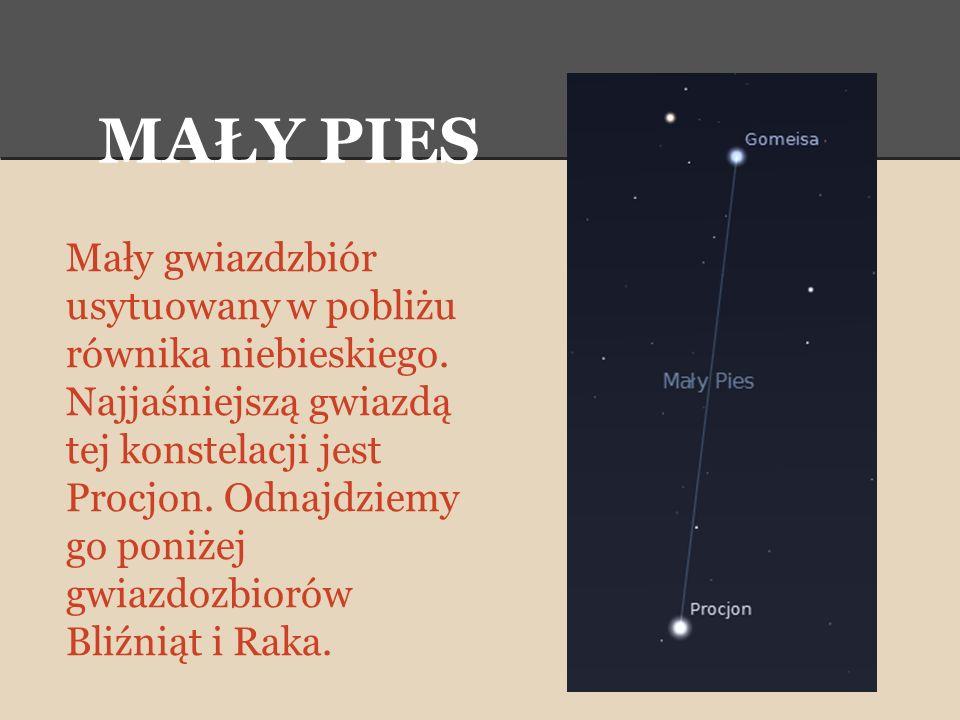 MAŁY PIES Mały gwiazdzbiór usytuowany w pobliżu równika niebieskiego. Najjaśniejszą gwiazdą tej konstelacji jest Procjon. Odnajdziemy go poniżej gwiaz
