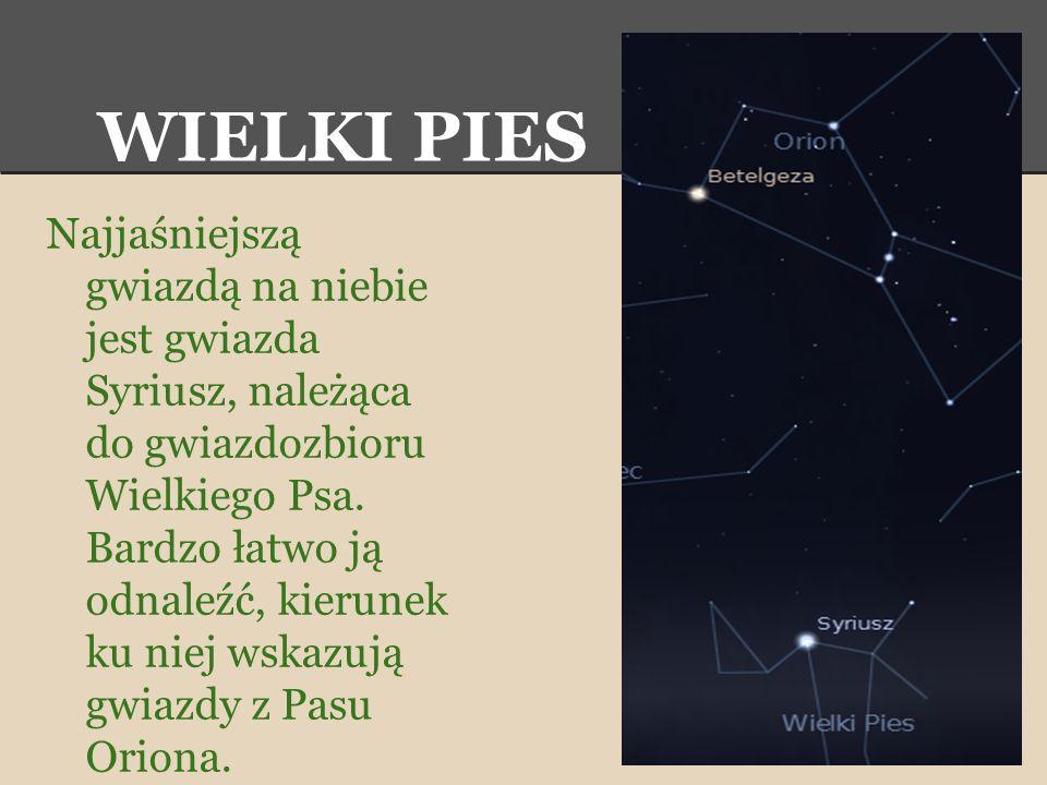 WIELKI PIES Najjaśniejszą gwiazdą na niebie jest gwiazda Syriusz, należąca do gwiazdozbioru Wielkiego Psa. Bardzo łatwo ją odnaleźć, kierunek ku niej