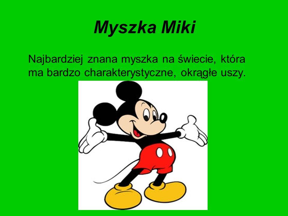 Myszka Miki Najbardziej znana myszka na świecie, która ma bardzo charakterystyczne, okrągłe uszy.