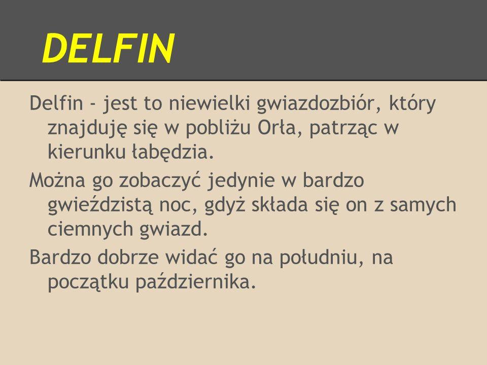 DELFIN Delfin - jest to niewielki gwiazdozbiór, który znajduję się w pobliżu Orła, patrząc w kierunku łabędzia. Można go zobaczyć jedynie w bardzo gwi