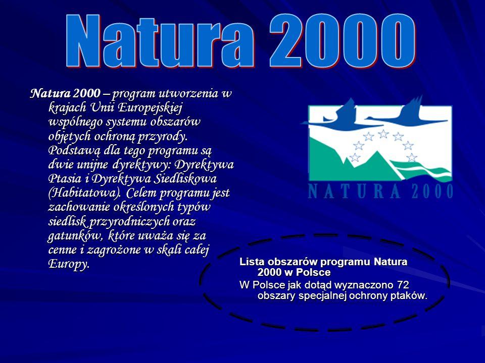 Rezerwat przyrody Obejmuje obszary zachowane w stanie naturalnym lub mało zmienionym wyróżniające się szczególnymi wartościami przyrodniczymi, naukowymi, kulturowymi lub walorami krajobrazowymi.
