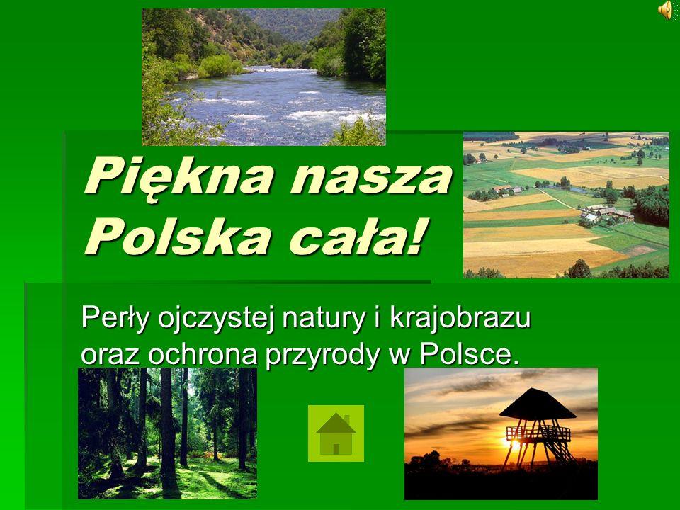 Spis treści 1.W obronie różnorodności. 2. Parki narodowe.
