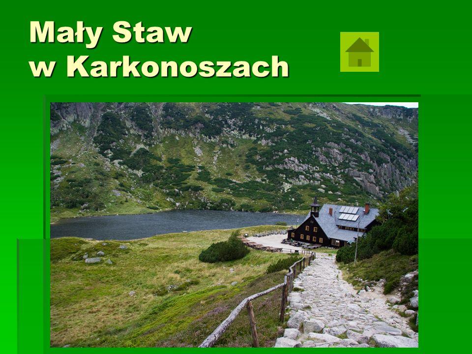 2.Parki narodowe… Pod koniec lat 20.