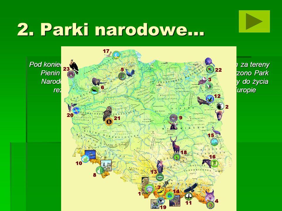Pieniński Park Narodowy Park pieniński utworzono na obszarze Pienin, górskiego masywu o długości 35 km i szerokości 6 km.