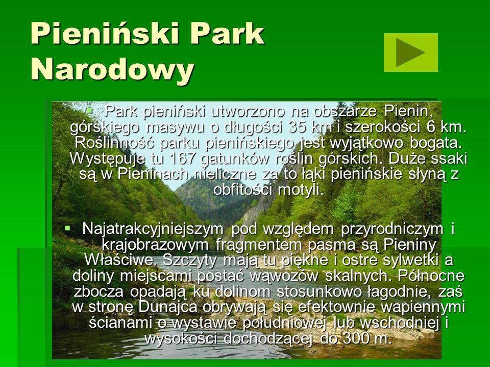 Kampinoski Park Narodowy Idea utworzenia Parku powstała w latach dwudziestych XX w.