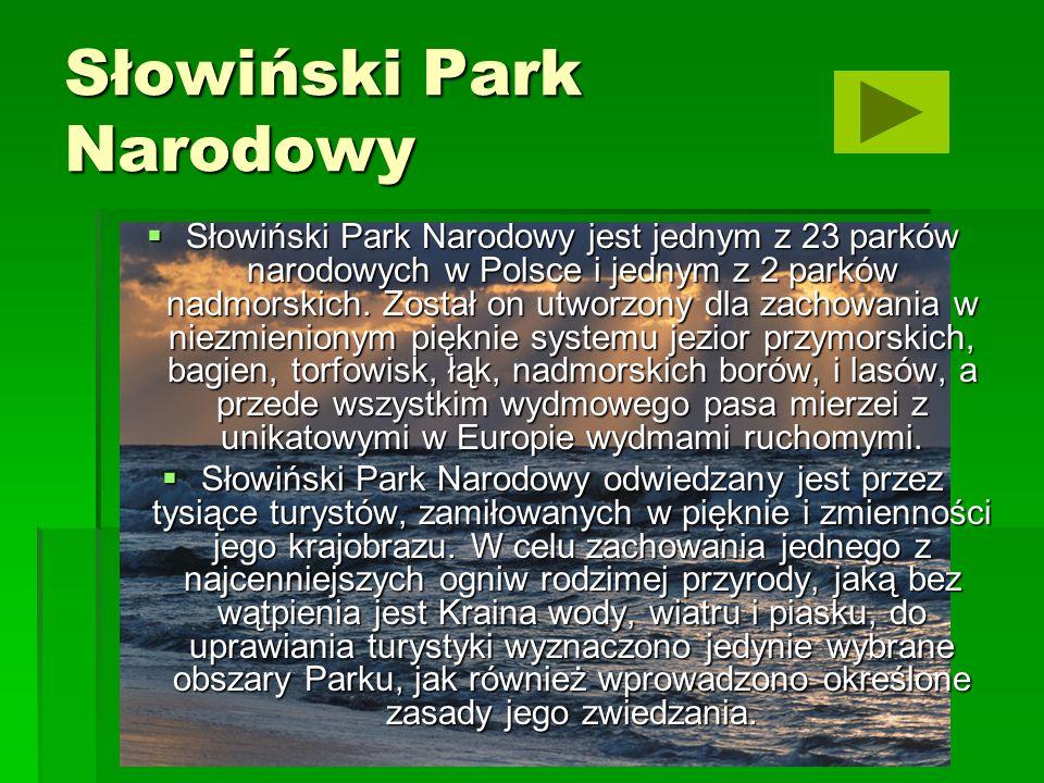 Biebrzański Park Narodowy Biebrzański Park Narodowy został utworzony 09.09.1993 r.