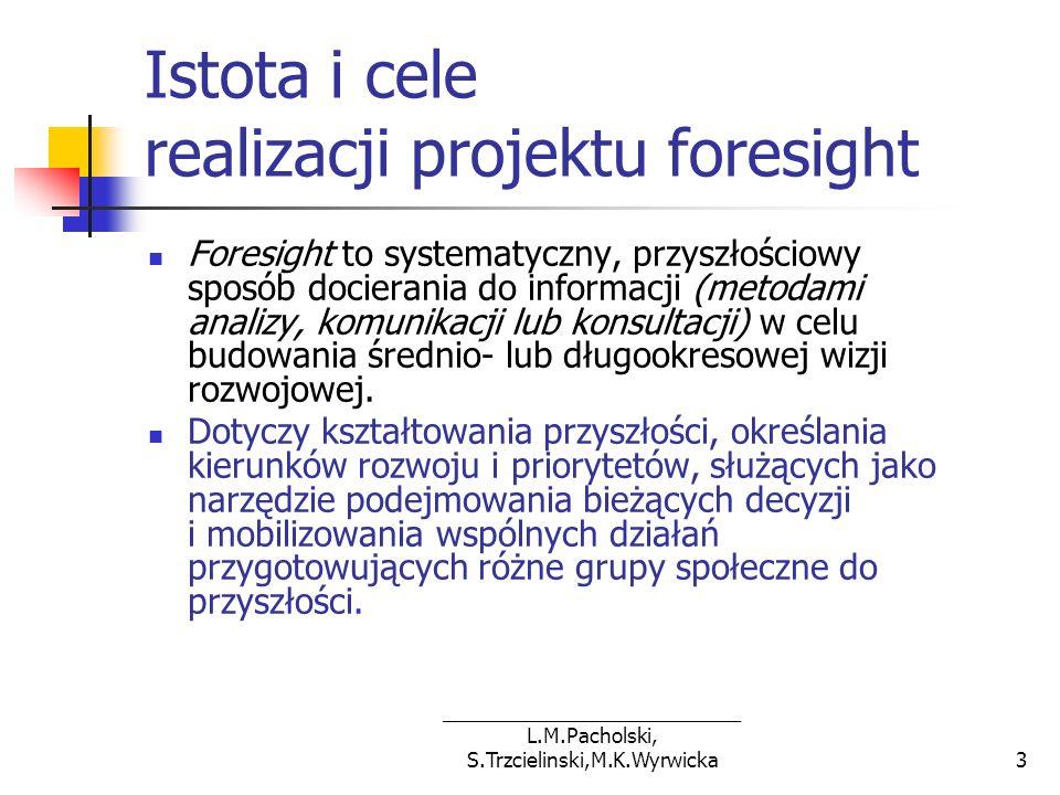 ___________________________ L.M.Pacholski, S.Trzcielinski,M.K.Wyrwicka14 Struktura organizacyjna Komitet Sterujący Panel Główny Koordynator Projektu Panele Obszarów Badawczych Zespół Realizujący Zespół Obsługi Technicznej