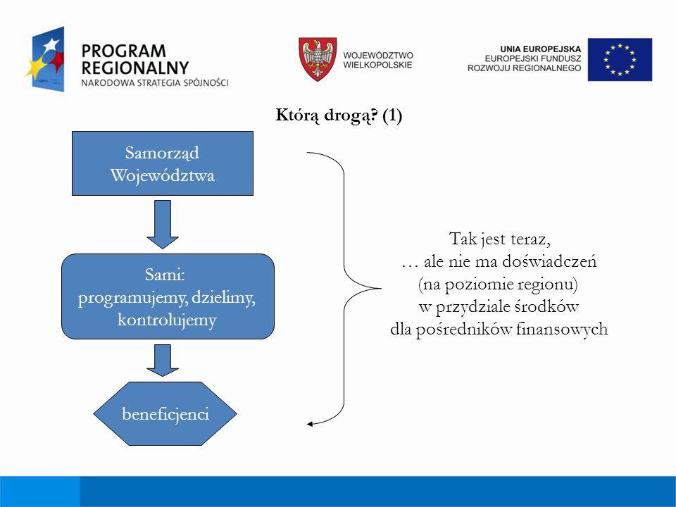 Schemat wdrożenia Inicjatywy JEREMIE 1.Podjęcie decyzji o stworzeniu Funduszu Powierniczego (RPO) 2.Wybór Menedżera Funduszu Powierniczego (FP) (zgodnie z regulacjami dot.