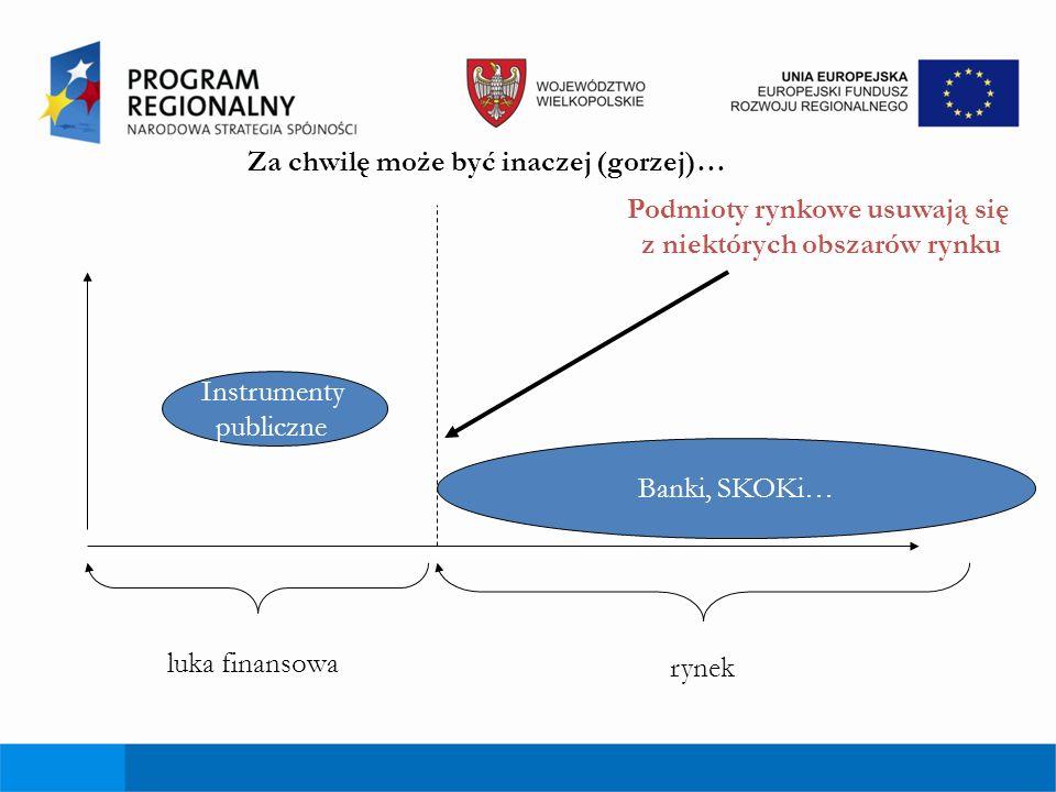 Portfel instrumentów wg Instytucji Zrządzającej: 30-50% portfela zostanie skierowane na instrumenty wysokiego ryzyka, tj.