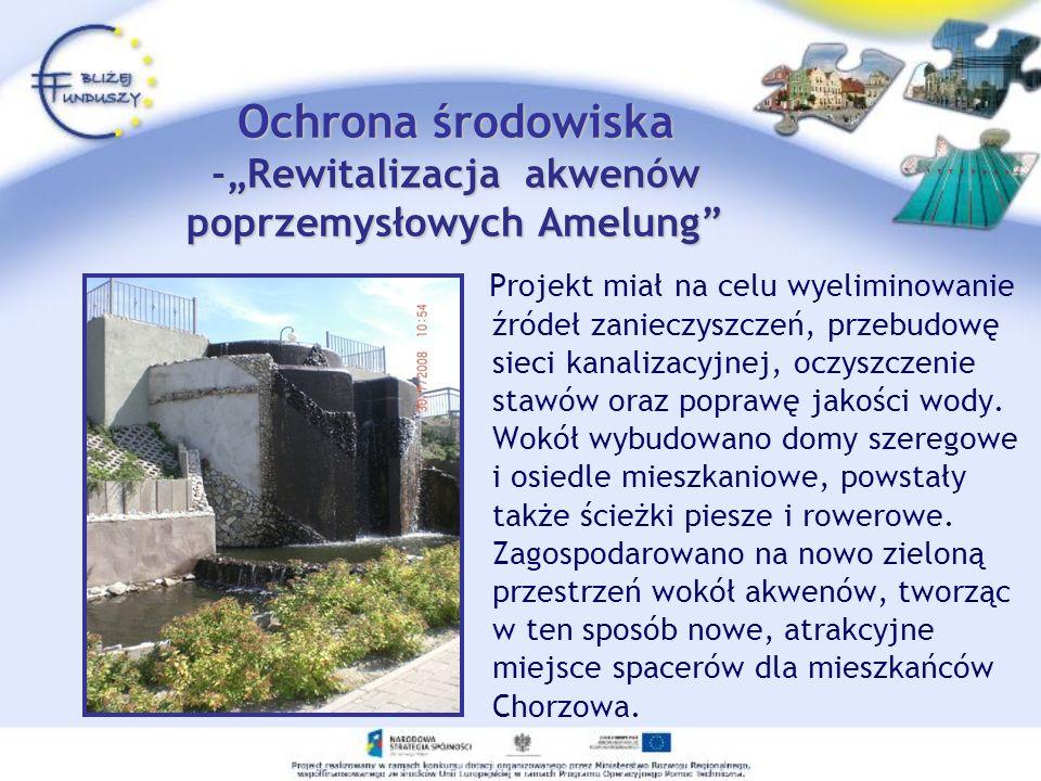 Projekt miał na celu wyeliminowanie źródeł zanieczyszczeń, przebudowę sieci kanalizacyjnej, oczyszczenie stawów oraz poprawę jakości wody. Wokół wybud