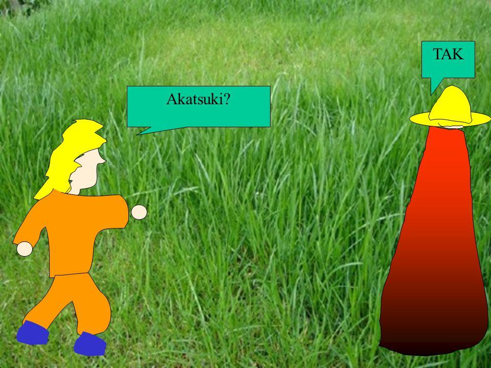 Robisz wrażenie! Stajesz się coraz lepszy Naruto. Hej!