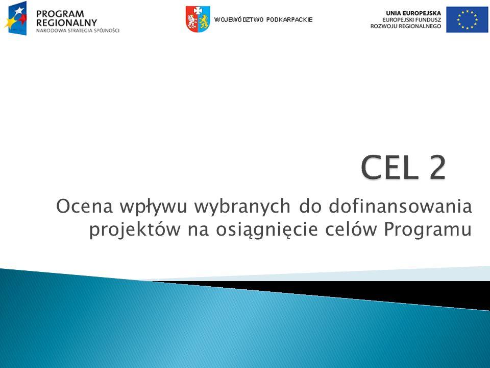 Ocena wpływu wybranych do dofinansowania projektów na osiągnięcie celów Programu