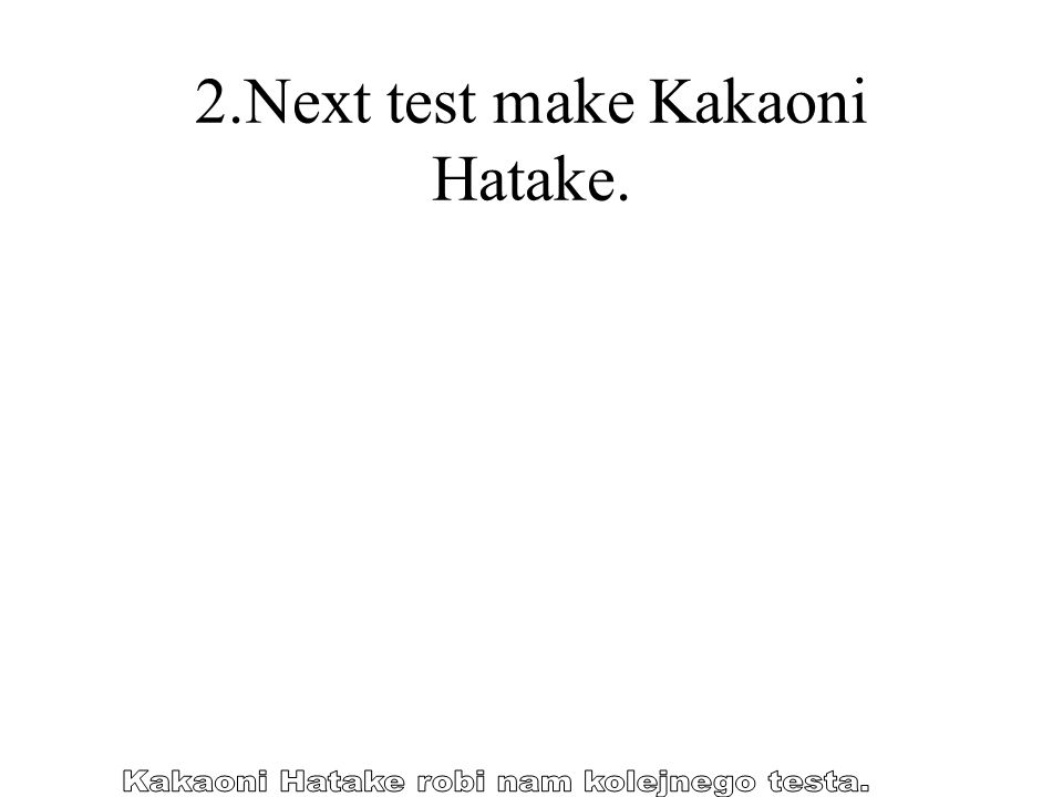 2.Next test make Kakaoni Hatake.