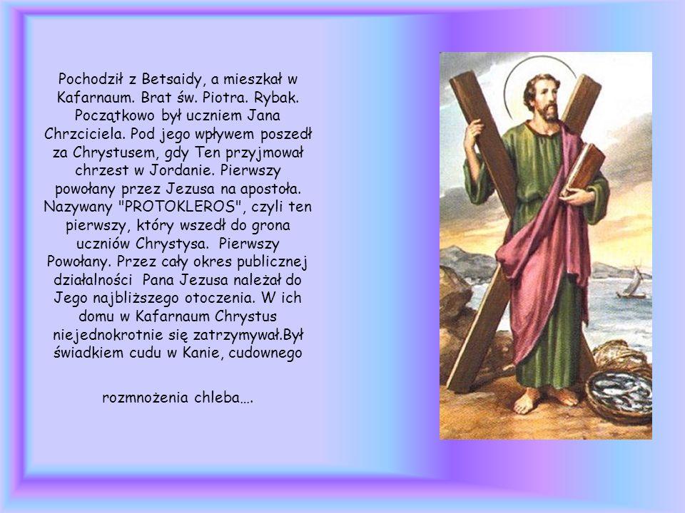 Pochodził z Betsaidy, a mieszkał w Kafarnaum. Brat św. Piotra. Rybak. Początkowo był uczniem Jana Chrzciciela. Pod jego wpływem poszedł za Chrystusem,