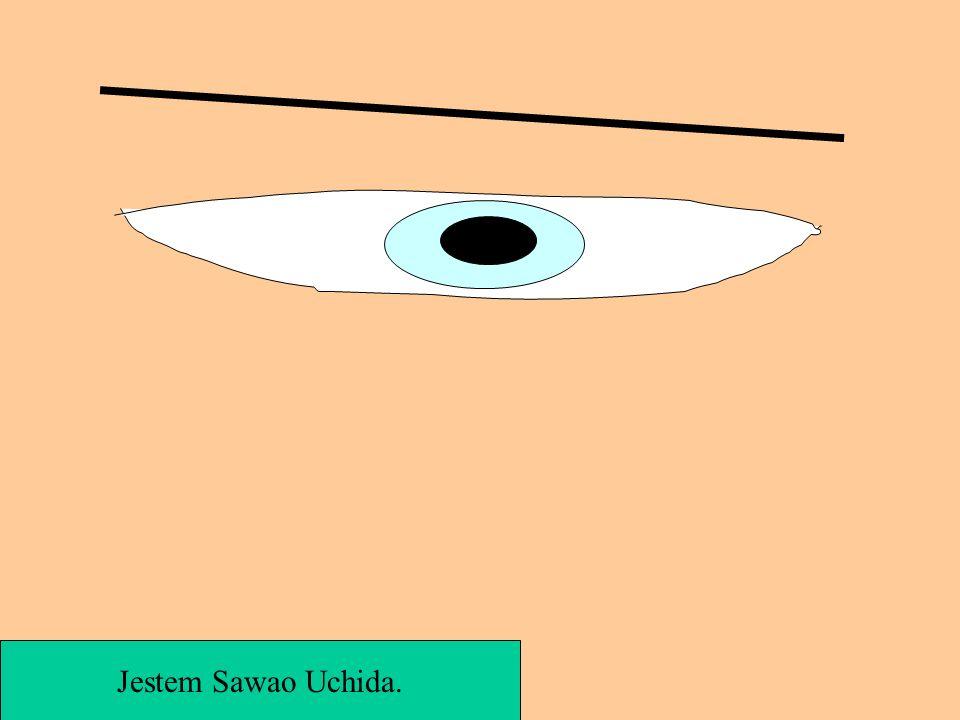 Jestem Sawao Uchida.