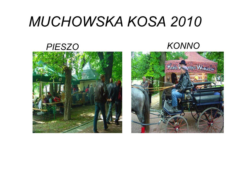 MUCHOWSKA KOSA 2010 PIESZO KONNO