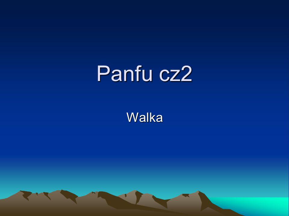 Panfu cz2 Walka
