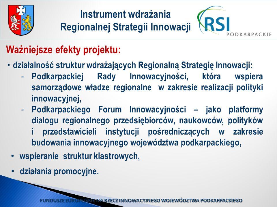 Ważniejsze efekty projektu: Instrument wdrażania Regionalnej Strategii Innowacji działalność struktur wdrażających Regionalną Strategię Innowacji: dzi
