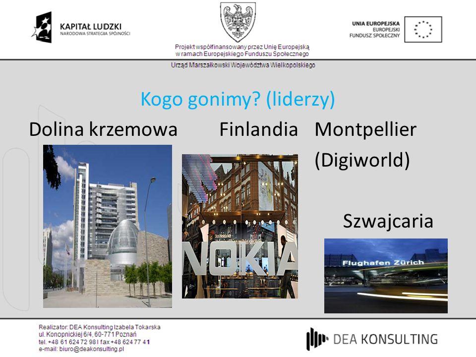 Ranking liderów (tabela w excelu) Knowledge Economy index (KEI) Information and communication technologies (ICT)