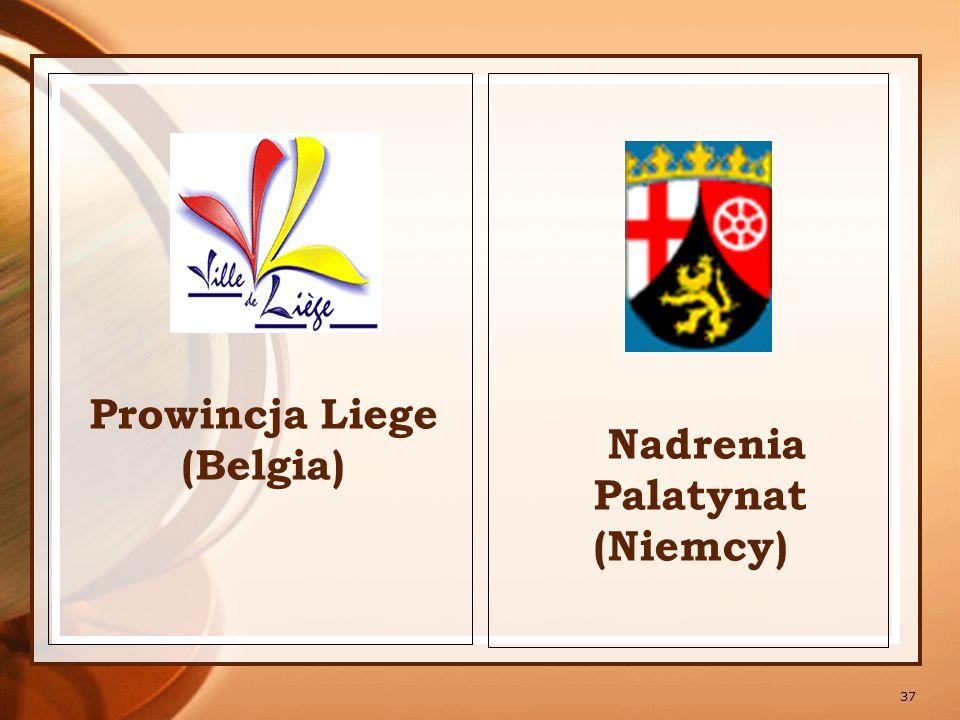 38 Dijon (Francja) Włączenie się w projekt edukacyjny realizowany przez Akademię Pedagogiczną w Krakowie wspólnie z 13 partnerami z 11 krajów w ramach programu INTERREG