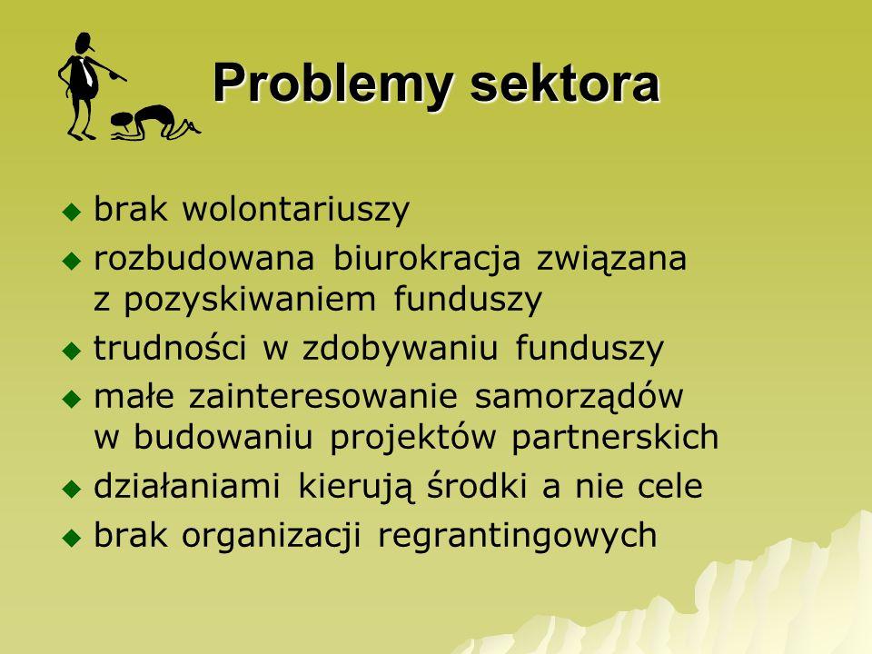 Problemy sektora brak wolontariuszy rozbudowana biurokracja związana z pozyskiwaniem funduszy trudności w zdobywaniu funduszy małe zainteresowanie sam
