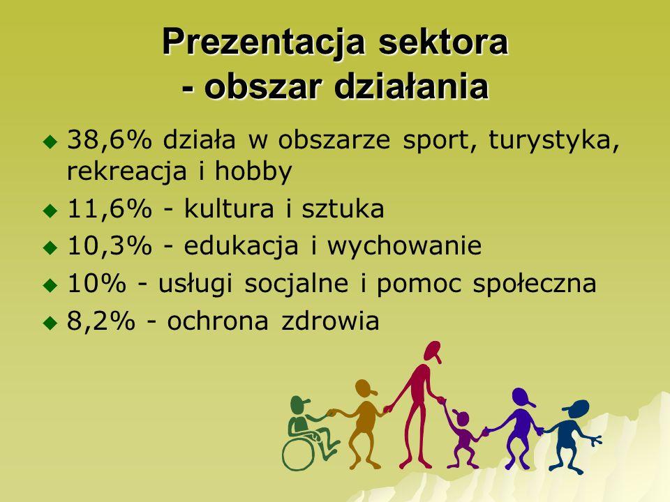 38,6% działa w obszarze sport, turystyka, rekreacja i hobby 11,6% - kultura i sztuka 10,3% - edukacja i wychowanie 10% - usługi socjalne i pomoc społe