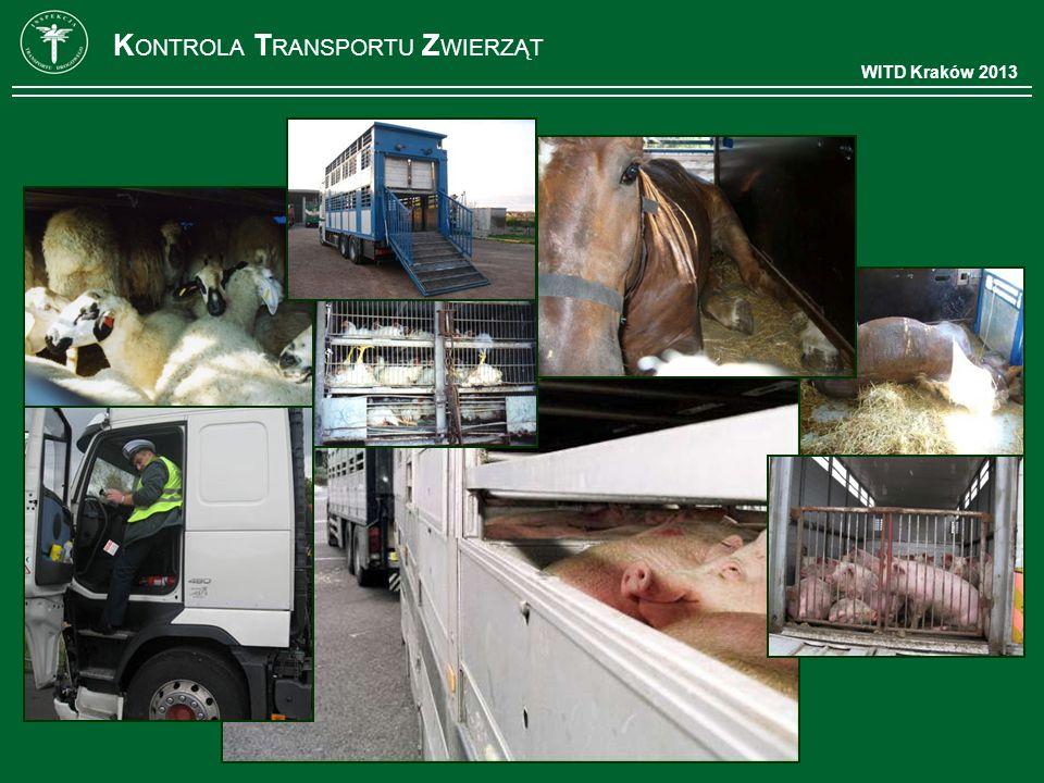 WITD Kraków 2013 K ONTROLA T RANSPORTU Z WIERZĄT
