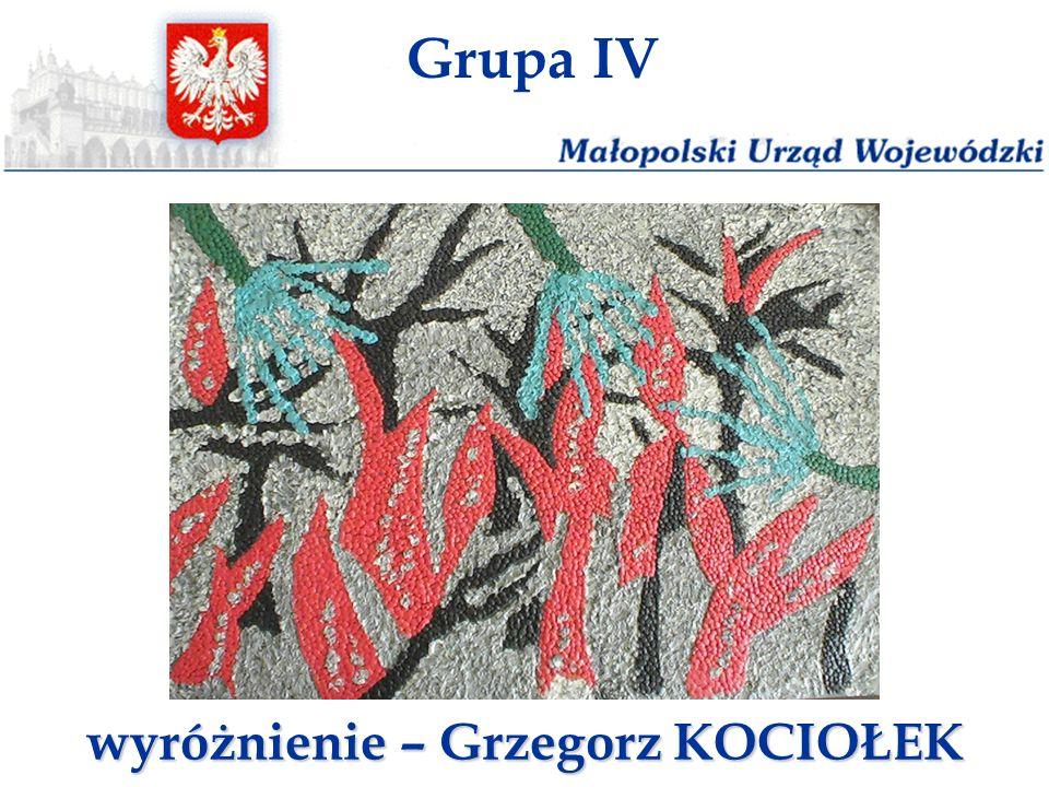 Grupa IV wyróżnienie – Grzegorz KOCIOŁEK