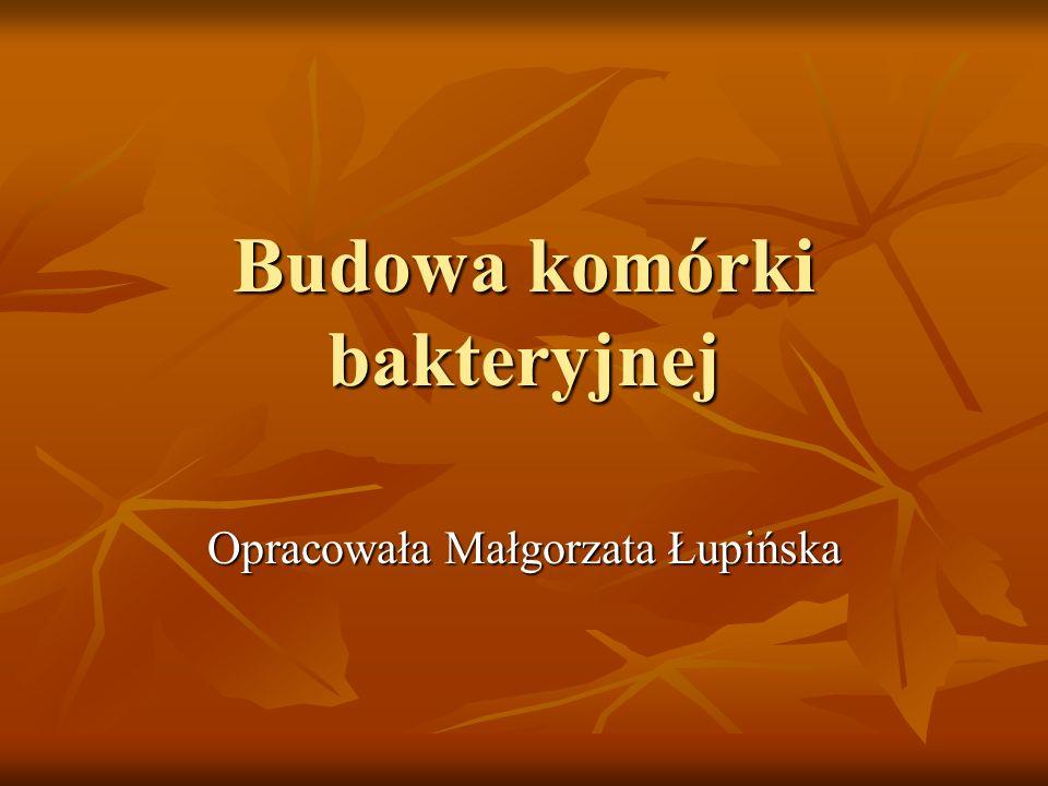Budowa komórki bakteryjnej Opracowała Małgorzata Łupińska