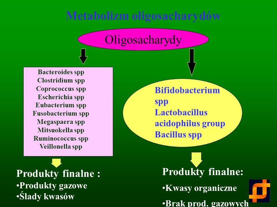 Oligosacharydy w przewodzie pokarmowym człowieka Gibson i in. 1995