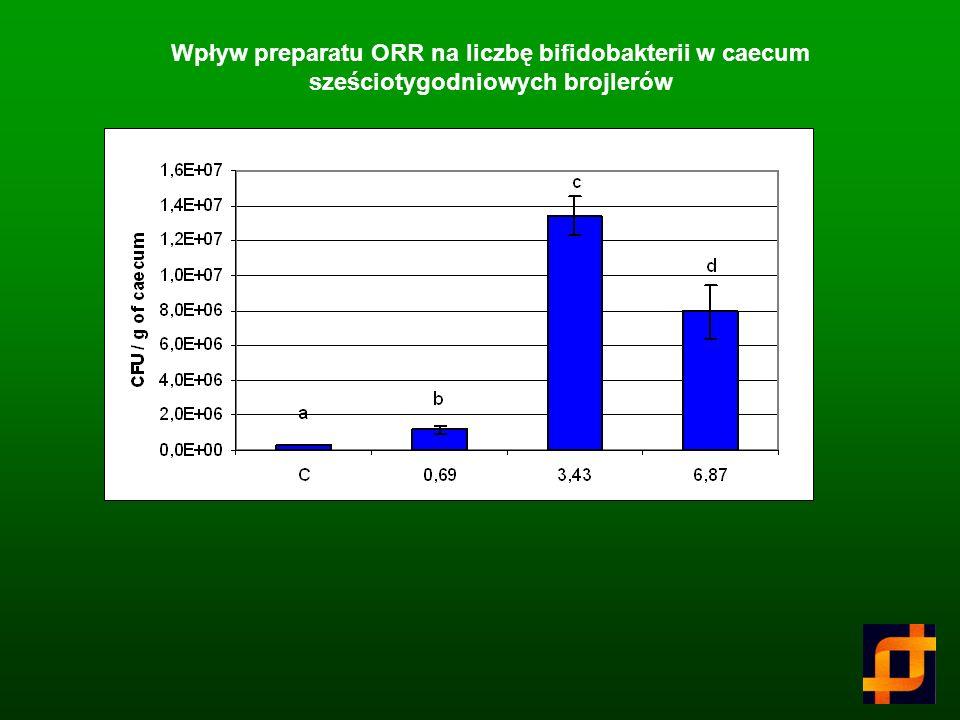 Wpływ różnych oligosacharydów na liczbą bifidobakterii w kale (CFU/g)