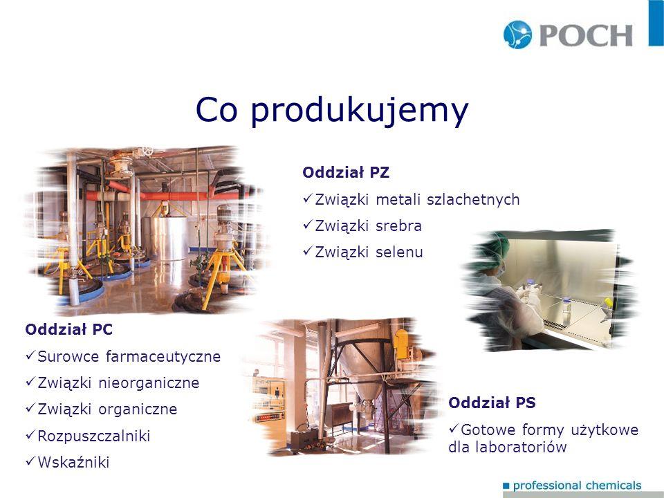 Strategia działania POCH S.A.lata 2005-2010 Działalność bieżąca POCH S.A.