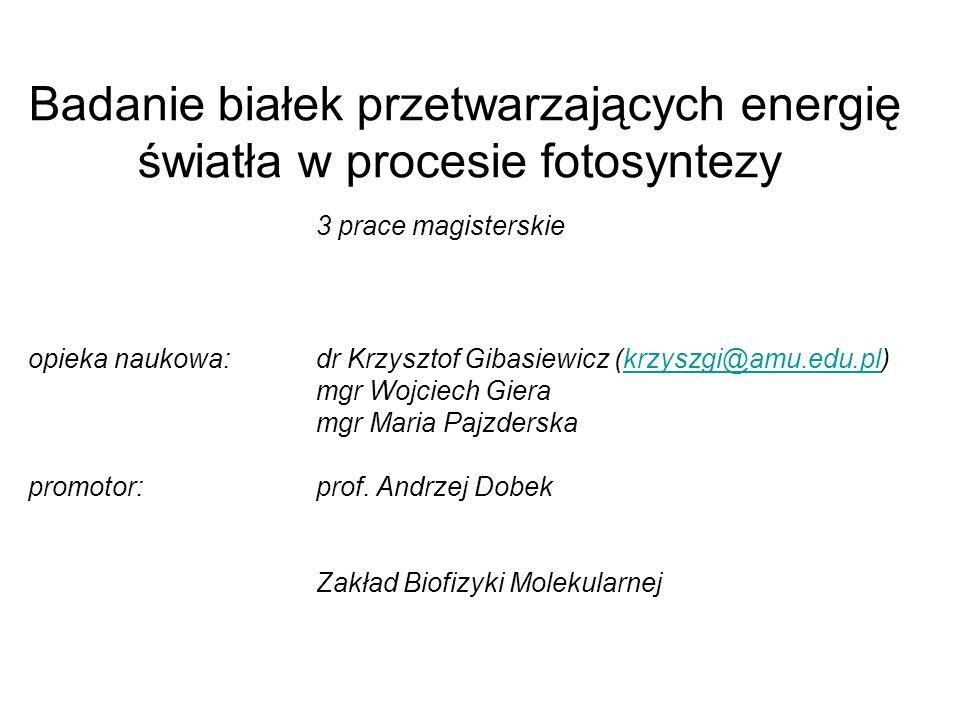 Badanie białek przetwarzających energię światła w procesie fotosyntezy 3 prace magisterskie opieka naukowa:dr Krzysztof Gibasiewicz (krzyszgi@amu.edu.
