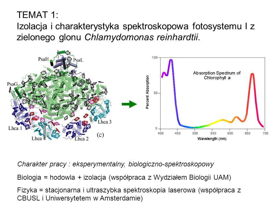 TEMAT 1: Izolacja i charakterystyka spektroskopowa fotosystemu I z zielonego glonu Chlamydomonas reinhardtii. Biologia = hodowla + izolacja (współprac