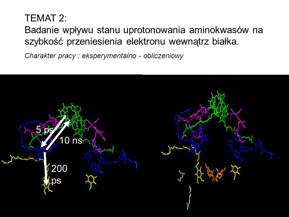 TEMAT 2: Badanie wpływu stanu uprotonowania aminokwasów na szybkość przeniesienia elektronu wewnątrz białka. 5 ps 10 ns 200 ps Charakter pracy : ekspe