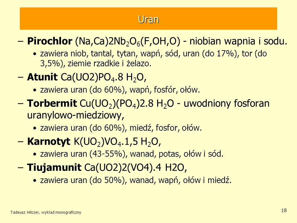 Tadeusz Hilczer, wykład monograficzny 18 Uran –Pirochlor (Na,Ca)2Nb 2 O 6 (F,OH,O) - niobian wapnia i sodu. zawiera niob, tantal, tytan, wapń, sód, ur