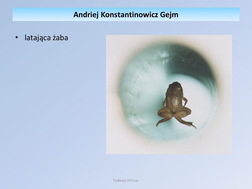 latająca żaba Andriej Konstantinowicz Gejm Tadeusz Hilczer