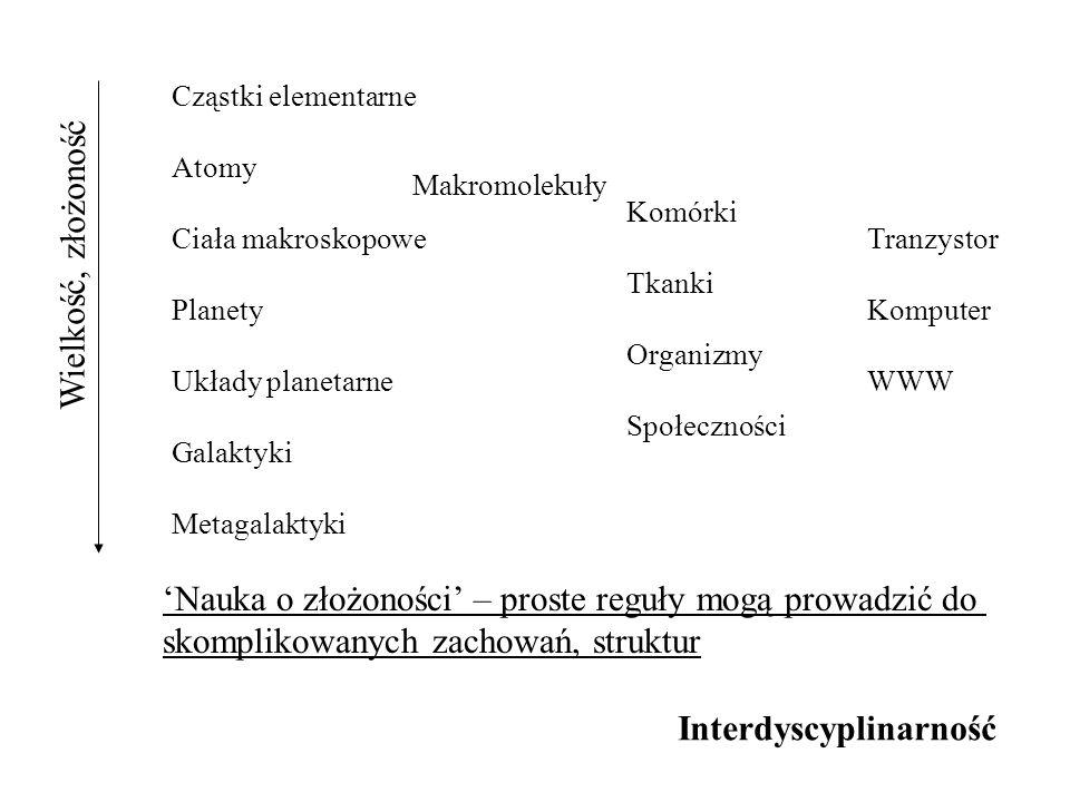 Struktura połączeń internetowych Nauka - wyszukiwanie podobieństw