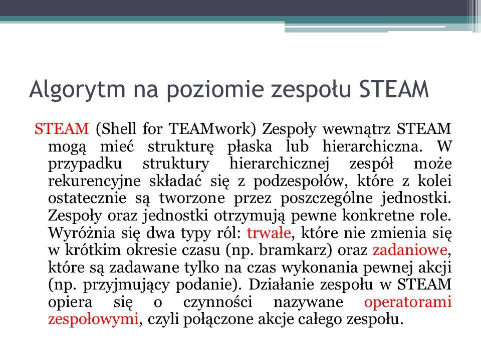 Algorytm na poziomie zespołu STEAM STEAM (Shell for TEAMwork) Zespoły wewnątrz STEAM mogą mieć strukturę płaska lub hierarchiczna. W przypadku struktu