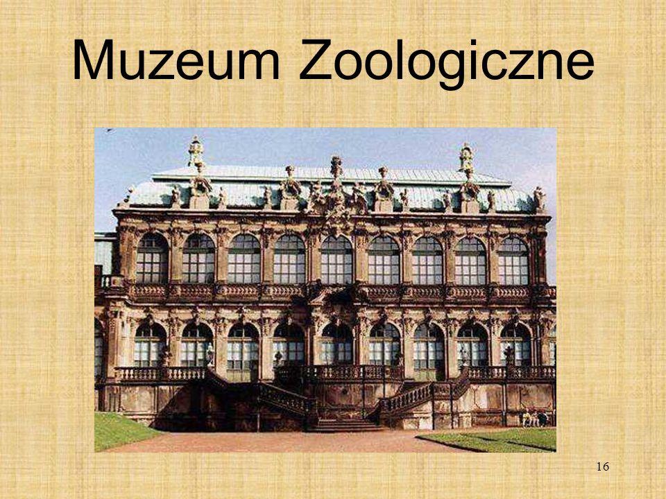 16 Muzeum Zoologiczne