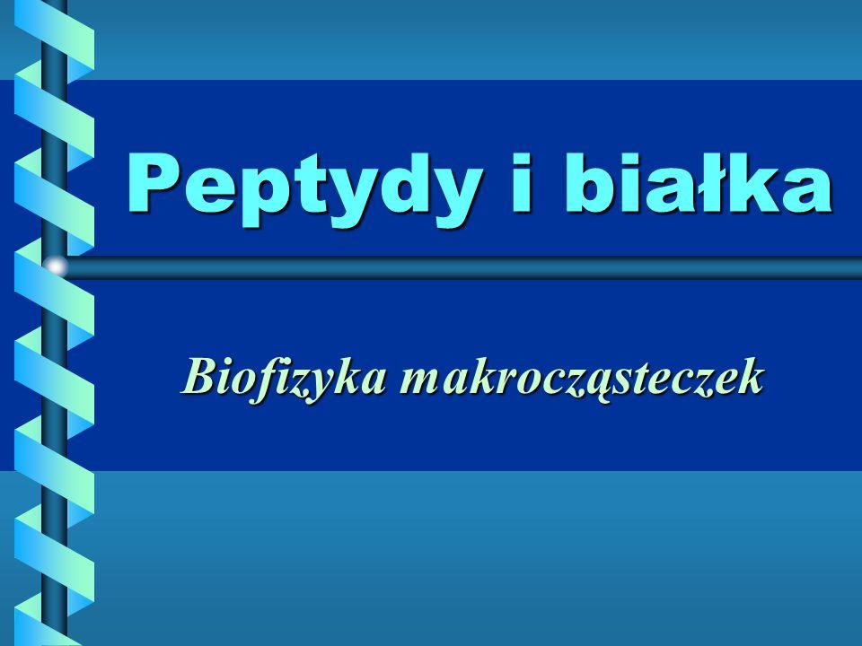Peptydy i białka Biofizyka makrocząsteczek