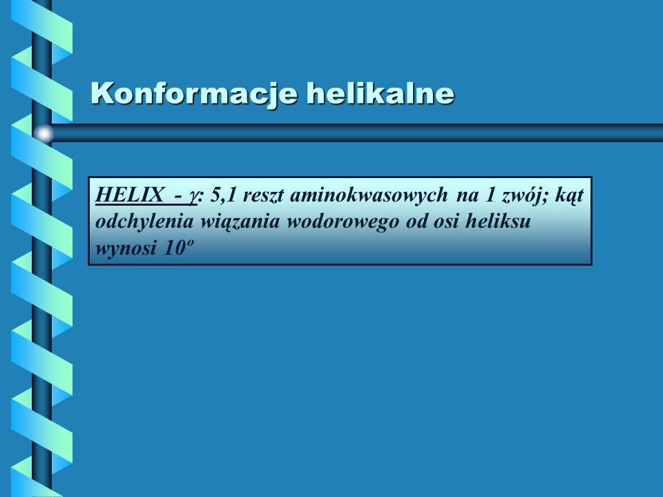 Konformacje helikalne HELIX - : 5,1 reszt aminokwasowych na 1 zwój; kąt odchylenia wiązania wodorowego od osi heliksu wynosi 10º