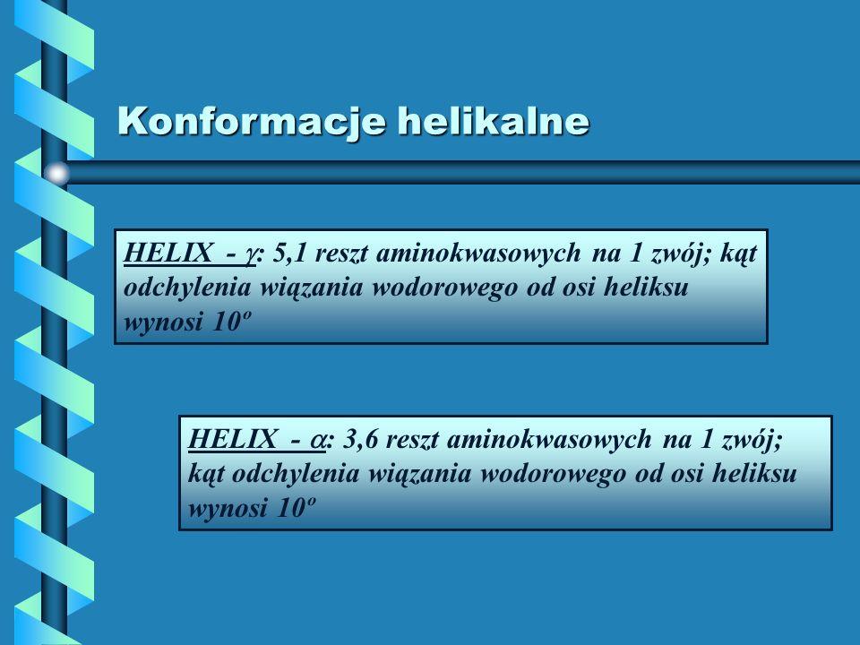 Konformacje helikalne HELIX - : 5,1 reszt aminokwasowych na 1 zwój; kąt odchylenia wiązania wodorowego od osi heliksu wynosi 10º HELIX - : 3,6 reszt a
