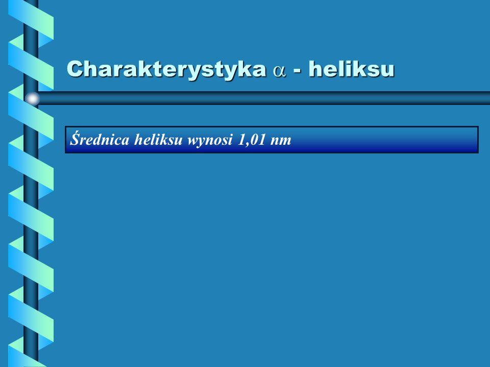 Charakterystyka - heliksu Średnica heliksu wynosi 1,01 nm