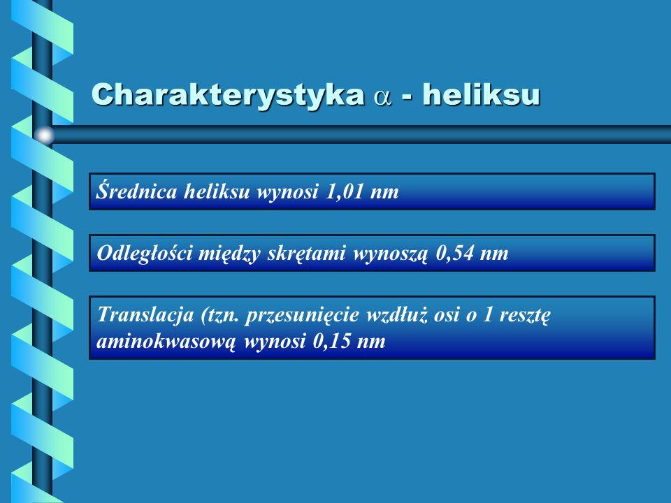 Charakterystyka - heliksu Średnica heliksu wynosi 1,01 nm Odległości między skrętami wynoszą 0,54 nm Translacja (tzn. przesunięcie wzdłuż osi o 1 resz