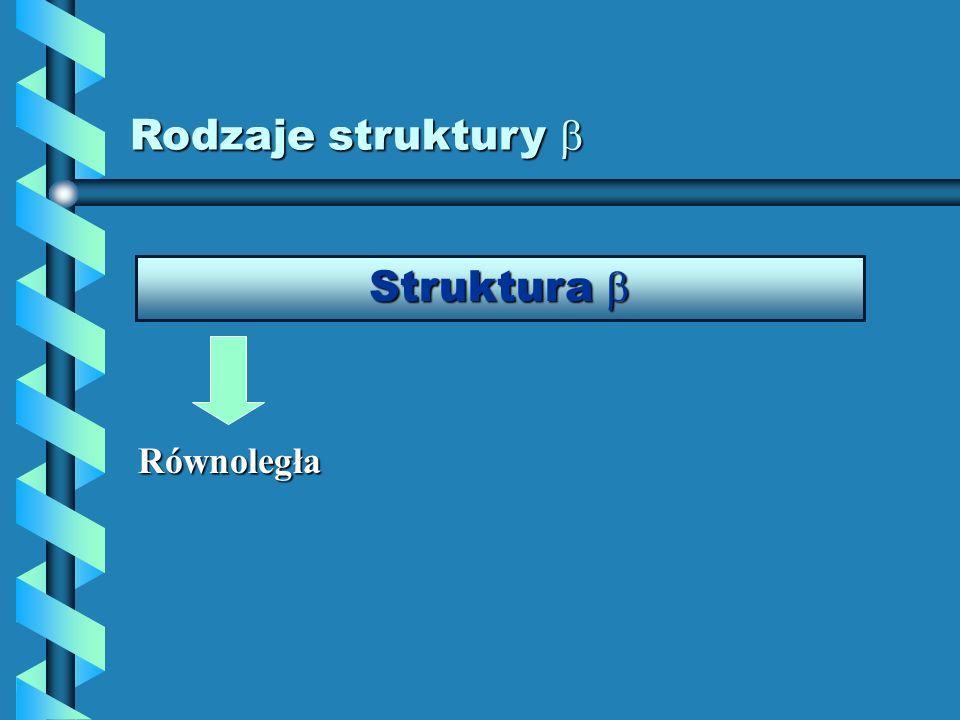 Rodzaje struktury Rodzaje struktury Struktura Struktura Równoległa