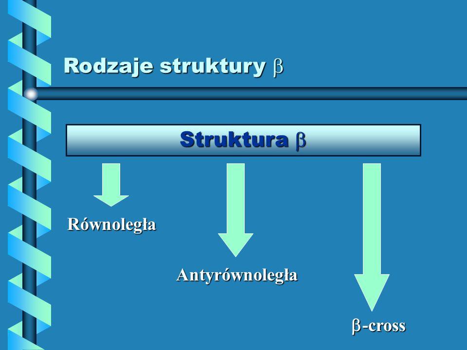 Rodzaje struktury Rodzaje struktury Struktura Struktura Równoległa Antyrównoległa -cross -cross